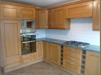 EasyRoommate UK - GREAT NEW HOUSEHARE, INC BILLS, FIBRE & CLEANERS - Newcastle-under-Lyme, Newcastle under Lyme - £455