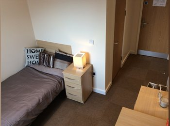 EasyRoommate UK - Flat shares available in Aberystwyth. - Aberystwyth, Aberystwyth - £429