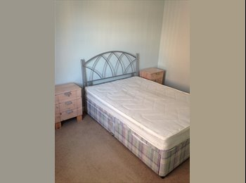 EasyRoommate UK - One spacious double room to rent - Pentwyn, Cardiff - £400