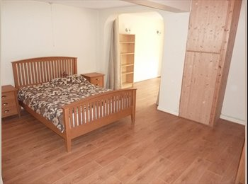 EasyRoommate UK - 1 room in shared house - suit professional/student - Wylde Green, Birmingham - £320