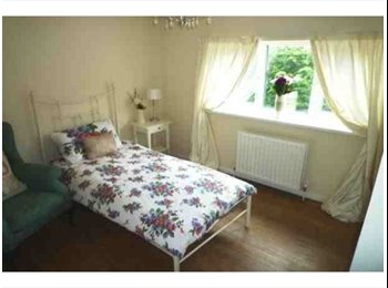 EasyRoommate UK - Lovely 3 bedroom house - St. Albans, St Albans - £585