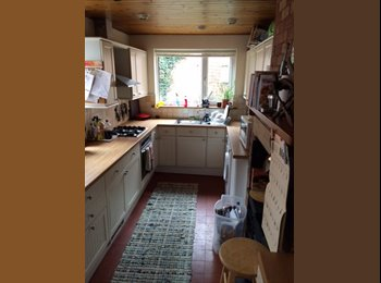 EasyRoommate UK - Gorgeous House in West End has a double room - Lincoln, Lincoln - £340