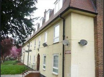EasyRoommate UK - Balham, Tooting Bec, Streatham Hill, Brixton - Streatham, London - £600