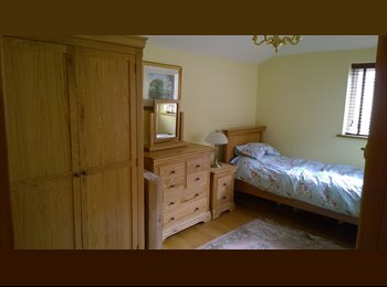 EasyRoommate UK - 1 LOVELY DOUBLE BEDROOM PLUS ENSUITE - Chichester, Chichester - £550