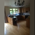 EasyRoommate UK Room to let - Oxford, Oxford - £ 500 per Month - Image 1
