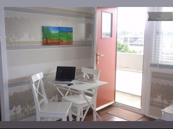 EasyRoommate UK - Single room in a 2 bedroom flat in the city centre - Aberdeen, Aberdeen - £425