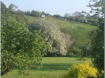 EasyRoommate UK - Big house in the Bath countryside - Shoscombe, Bath and NE Somerset - £550