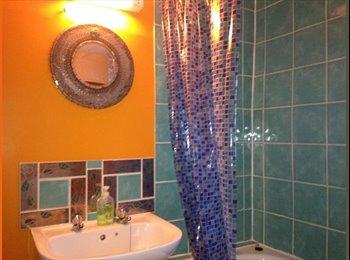 EasyRoommate UK - self contained 1 bed flat in central ashburton - Buckfastleigh, Buckfastleigh - £600