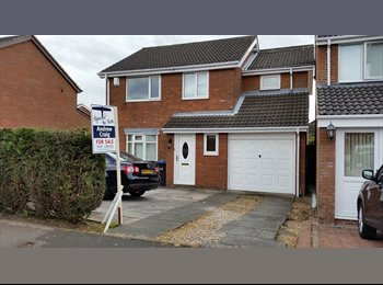 EasyRoommate UK - Modern 4 bed detached home rural area - Durham, Durham - £386