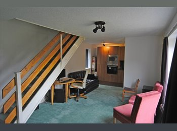 EasyRoommate UK - Central Bristol, male to share double room w/male - Windmill Hill, Bristol - £364