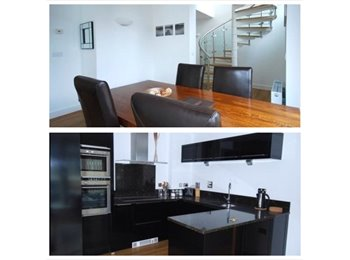 EasyRoommate UK - Docklands Duplex Penthouse - North Woolwich, London - £1408