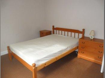 EasyRoommate UK - Double bedroom to let Newton Abbot - Highweek, Newton Abbot - £347
