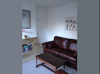 EasyRoommate UK - AMAZING LOCATION Chelmsford £380pcm inc some bills - Chelmsford, Chelmsford - £380