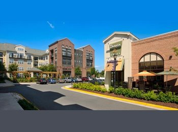 EasyRoommate US - 1 Room available at Luxury Condo $1000!!!! - Alexandria, Alexandria - $1000