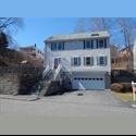 EasyRoommate US Looking for Roommates around August, Sepetmber - Roslindale, Boston - $ 650 per Month(s) - Image 1