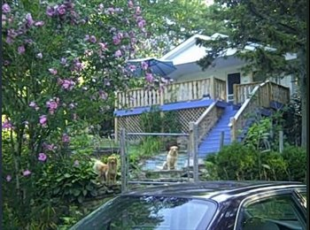 EasyRoommate US - Country living only minutes Asheville/Hendersonvil - Asheville, Other-North Carolina - $400