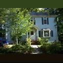 EasyRoommate US Comfortable room on quiet cul de sac - West Roxbury, Boston - $ 800 per Month(s) - Image 1