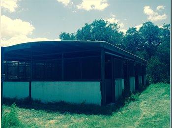 EasyRoommate US - HORSE STALL & ROOM,PASTURE 30ACRES COUNTRY PEOPLE - South San Antonio, San Antonio - $495