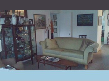 EasyRoommate US - Great apartment close to downtown and Avondale - Charleston, Charleston Area - $650