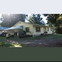 EasyRoommate US Don - Pierce, Tacoma - $ 550 per Month(s) - Image 1