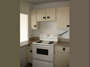 EasyRoommate US - Share large Studio!!! - Edgewater, Chicago - $450