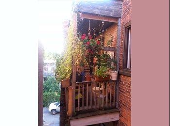 EasyRoommate CA - 4e coloc recherché(e) / 4th roommate wanted - Le Plateau-Mont-Royal, Montréal - $520