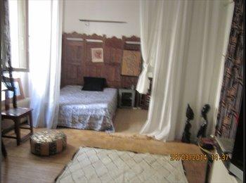 location chambre / living 24 m2