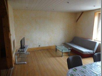 Appartager FR - Colocation dans T3 équipé - Mulhouse, Mulhouse - €285