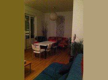 Appartager FR - Chambre à la Krutenau - Krutenau, Strasbourg - €407