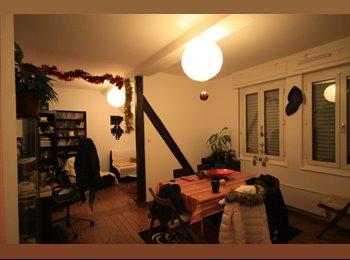 Appartager FR - colocation calme - Koenigshoffen, Strasbourg - €415