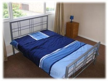 EasyRoommate UK - High Quality Rooms for Professionals - Pingreen, Stevenage - £525