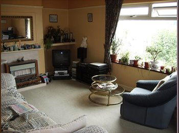 EasyRoommate UK - Double room to let, Paignton,also handy for Totnes - Paignton, Paignton - £347