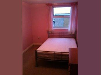 EasyRoommate UK - Double Room - Shrub End, Colchester - £347