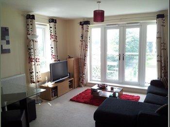 Furnished double ensuite room Basingstoke center