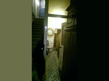 Fantastic en suite room for one  in Folkestone