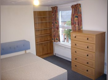 Need a great room in a great shared house?