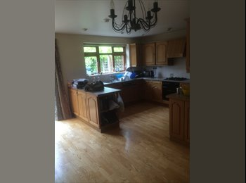 EasyRoommate UK - Room to let - Oxford, Oxford - £500