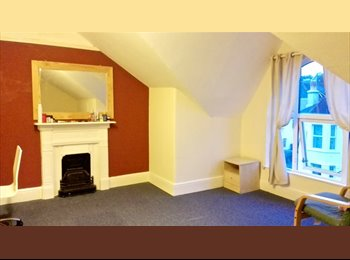 EasyRoommate UK - One large lovely double bedroom (>o<) - St Judes, Plymouth - £368