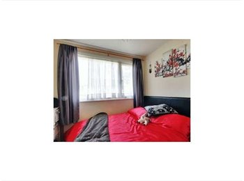 EasyRoommate UK - Double rooms to rent in Crawley - Crawley, Crawley - £495