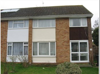 EasyRoommate UK - 2 bedrooms next to UKC - Hales Place, Canterbury - £350