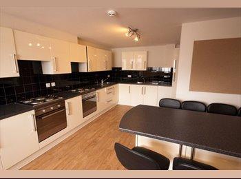 EasyRoommate UK - Private Halls Student Residence Available London - Tottenham, London - £689