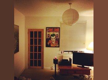 EasyRoommate UK - Good sized room with easy going housemates. - Kingsley, Northampton - £300