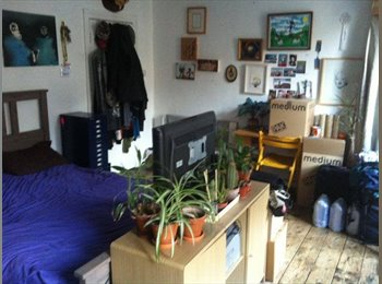Double in Friendly Central Camden Houseshare