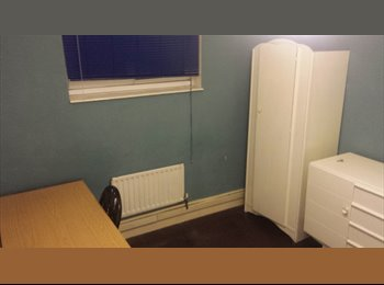 Spacious single room in the heart of bloomsbury