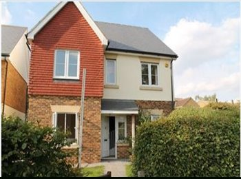EasyRoommate UK - LOOKING FOR 2 PEOPLE TO JOING 7 BED HOUSE, HERTS - Hatfield, Hatfield - £450