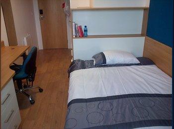 EasyRoommate UK - En-suite room at Abacus House - Brighton, Brighton and Hove - £572