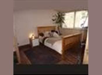 Large Double room for Mon - Fri person (commuter)