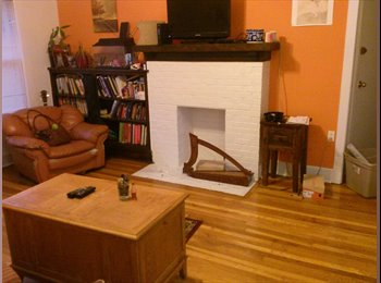 Roommate Needed Dec. 1st- Andersonville