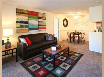 EasyRoommate US - GORGEOUS SPACIOUS APARTMENT IN AN IDEAL LOCATION - Chapel Hill, Chapel Hill - $599