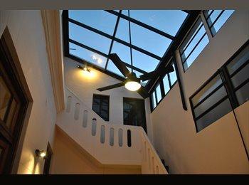 Habitacion libre en casa luminosa y tranquila.